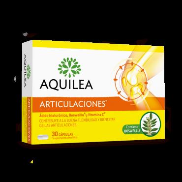Aquileia articulations...
