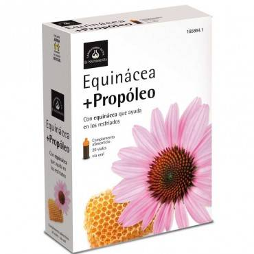 Der Naturist Equinacea...