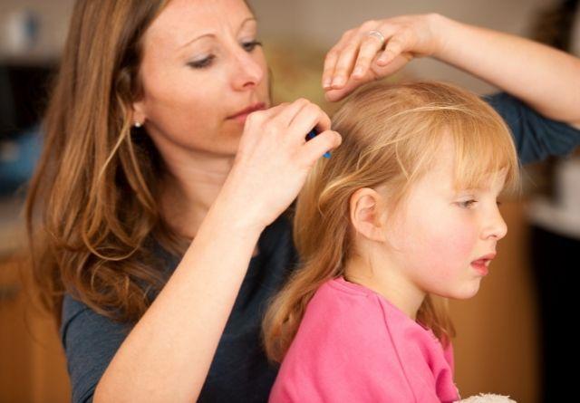 Para evitar los piojos en la cabeza de niños es bueno revisar su pelo.
