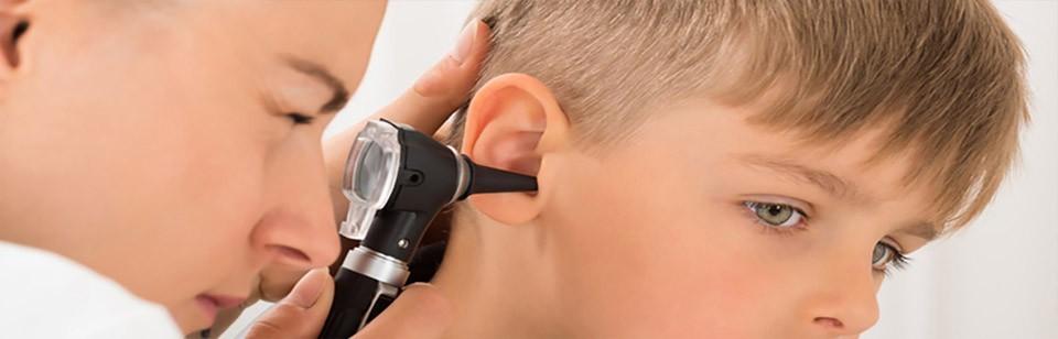 Oídos