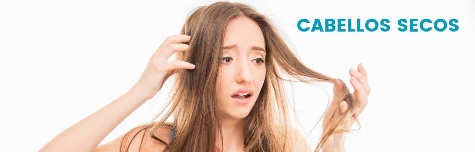 Trockenes Haar